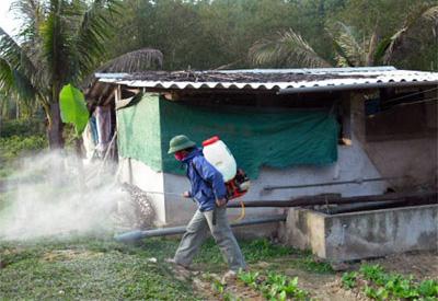 Dịch vụ diệt muỗi tại Hà Nội
